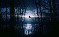 Serie La llamada de la Oscuridad, de Christina Dodd