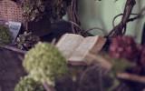 Un trocito de cielo: el perfume de los libros