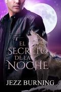 El secreto de la noche