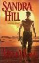 Sandra Hill - Hot & heavy