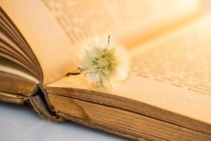 ¿Sabías que...? Las mujeres lectoras y el cortejo en el siglo XVII